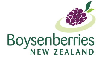 Boysenberries NZ